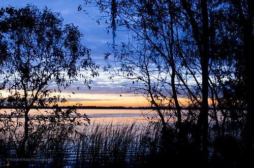 florida fl lakeland beforesunrise lakehancock nikkor2470mmf28ged circlebbarreserve nikond7000