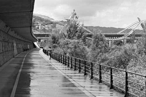 A ponte da Gaivota by Carlos Regalado