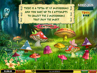 free Forest of Wonders slot gamble feature