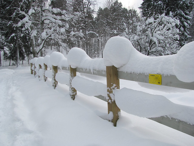 Nieve acumulada