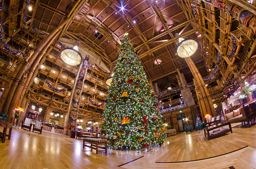 Wilderness Lodge Christmas 2011