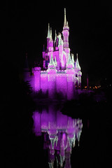 Night Shots - Disney World