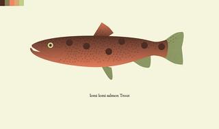 trout-35-lomi lomi salmon