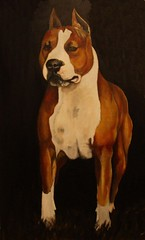 Sol painted by: Alexis Domenech Ochotorena,  Gracias , thanks Alexis for this beautiful paint of our girl
