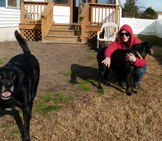 Auggie, Me, and Angus