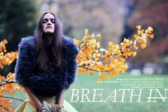 Breath In