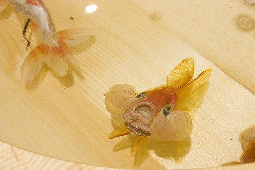 Awaya, Riusuke Fukahori - Goldfish Salvation