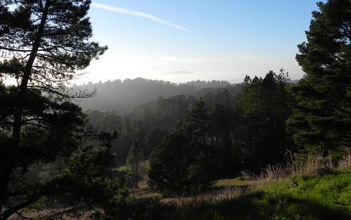 Mount Tam across the Bay by fre1ga
