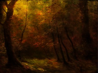 Background - Magic forest