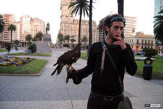El cazador de palomas