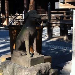 狛犬探訪 御嶽神社の本殿前はリアルな犬のかたち