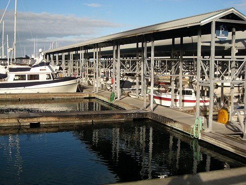 January along the Edmonds Marina