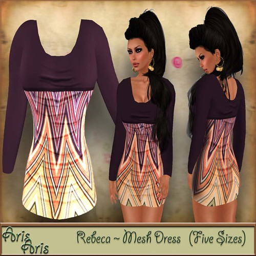 ArisAris Rig23 Rebeca mesh Dress, 220 lindens by Cherokeeh Asteria