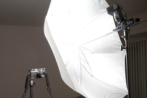 Camera Porn Studio