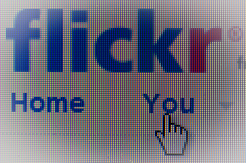 Flickr Home You