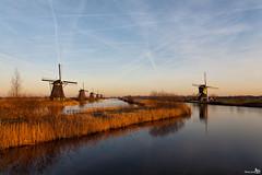 Mills, Kinderdijk