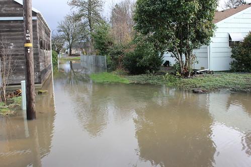 Philomath Flood