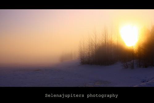 Polar sun! by selenajupiter