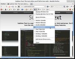 Linux Mint drop down menu Firefox