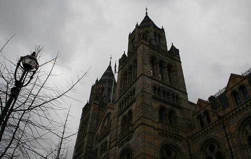 London - Natural History Museum 2