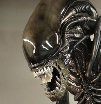 Alien Movie Fullsize alien movie prop