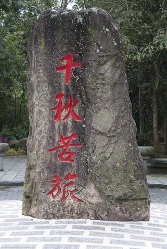 20111117_7258