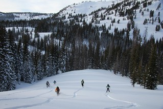 Exploring the backcountry by ski