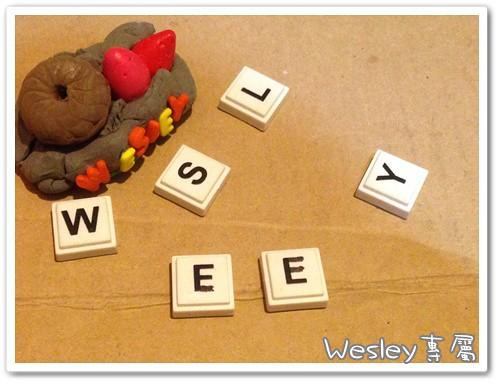 wesley專屬 (1)