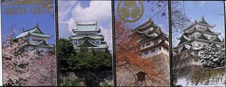 Entry ticket for Nagoya Castle