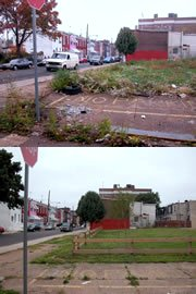 vacant lot in Philadelphia greened by the PA Horticultural Society (by: PA Horticultural Society via Perelman School of Medicine, U pf PA)