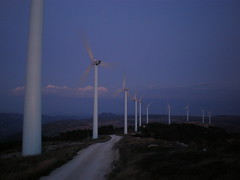 """Peña Alta"" wind farm at sunset"