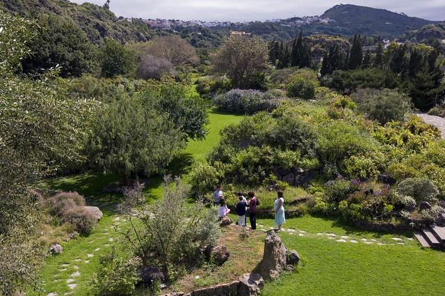 Jardín Botánico Viera y Clavijo. Zona Tafira