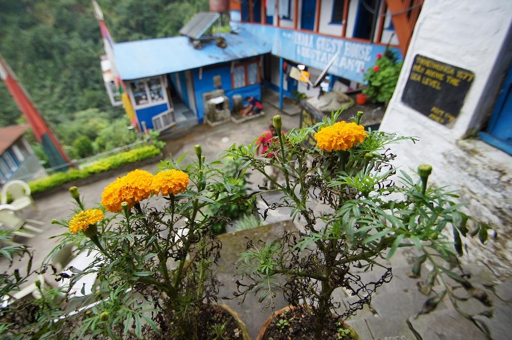 1003_Nepal_112