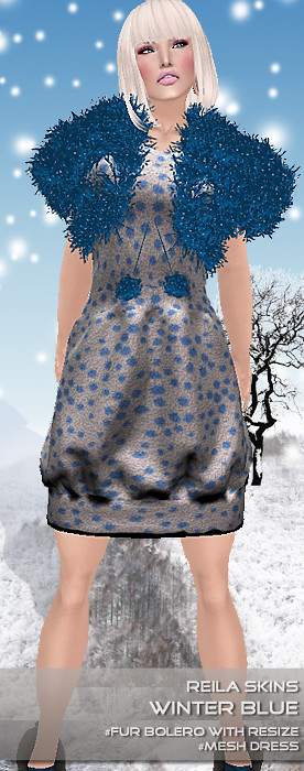 winter fair - winter blue