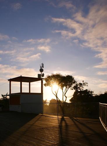 Sombras no sol da manhã