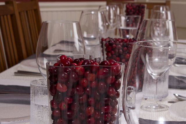 iittala Vase full of Cranberries