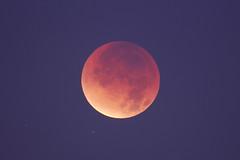 Lunar Eclipse - 10 Dec 2011