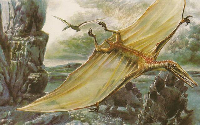 OLIVIER_1981_Pterodactylus_Stegosaurus