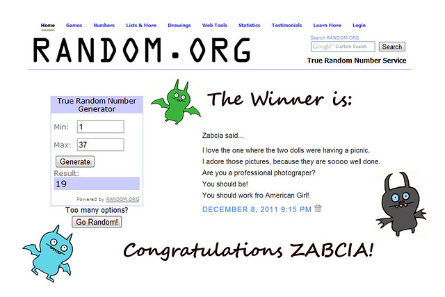 Holiday Giveaway Winner!
