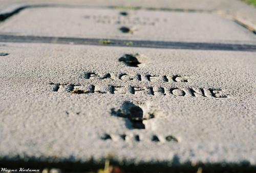 Pacific Telephone