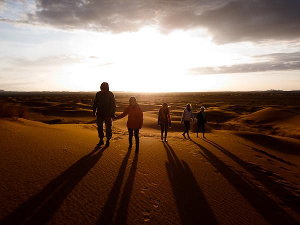 Maroc 2011 - Mes compagnons de vie dans le désert - Merzouga