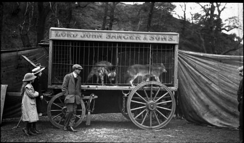 Caged canines, Lord John Sanger & Sons by Tyne & Wear Archives & Museums