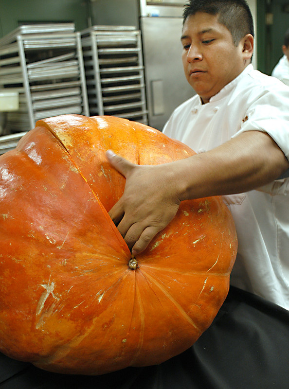 pumpkin butchering2