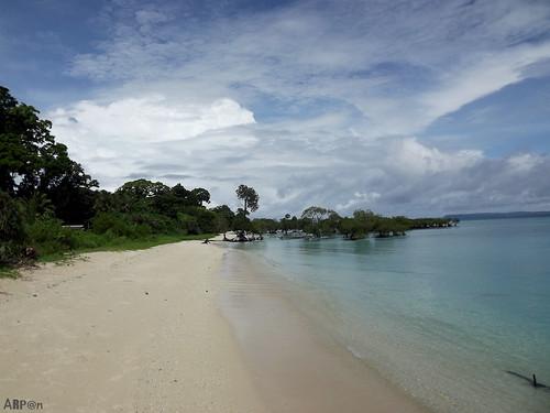 Neel Island