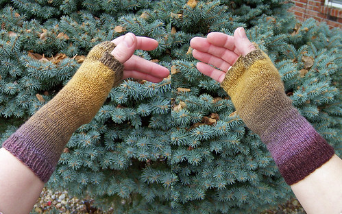 Autumn Leaf mitts - both edges