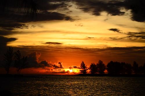 sunset sky orange tree beach nature water sunshine dusk sarawak malaysia borneo bintulu sarawakborneo blinkagain