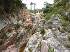 Canyon du Niffru : la rive gauche du contournement du début du canyon