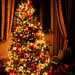 Christmas time by df.serena