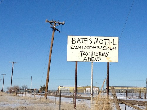 bates motel and taxidermy