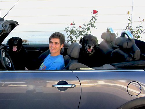 nick and pups